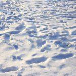 snieg 150x150 - 2016, idź już sobie. Czyli podsumowanie roku