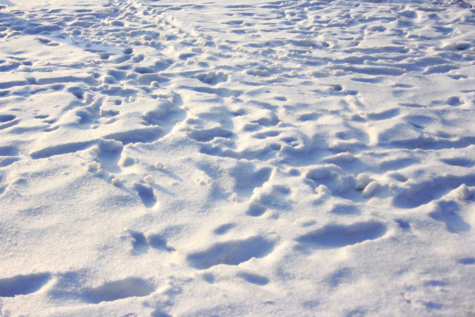 snieg 940x627 - 2016, idź już sobie. Czyli podsumowanie roku