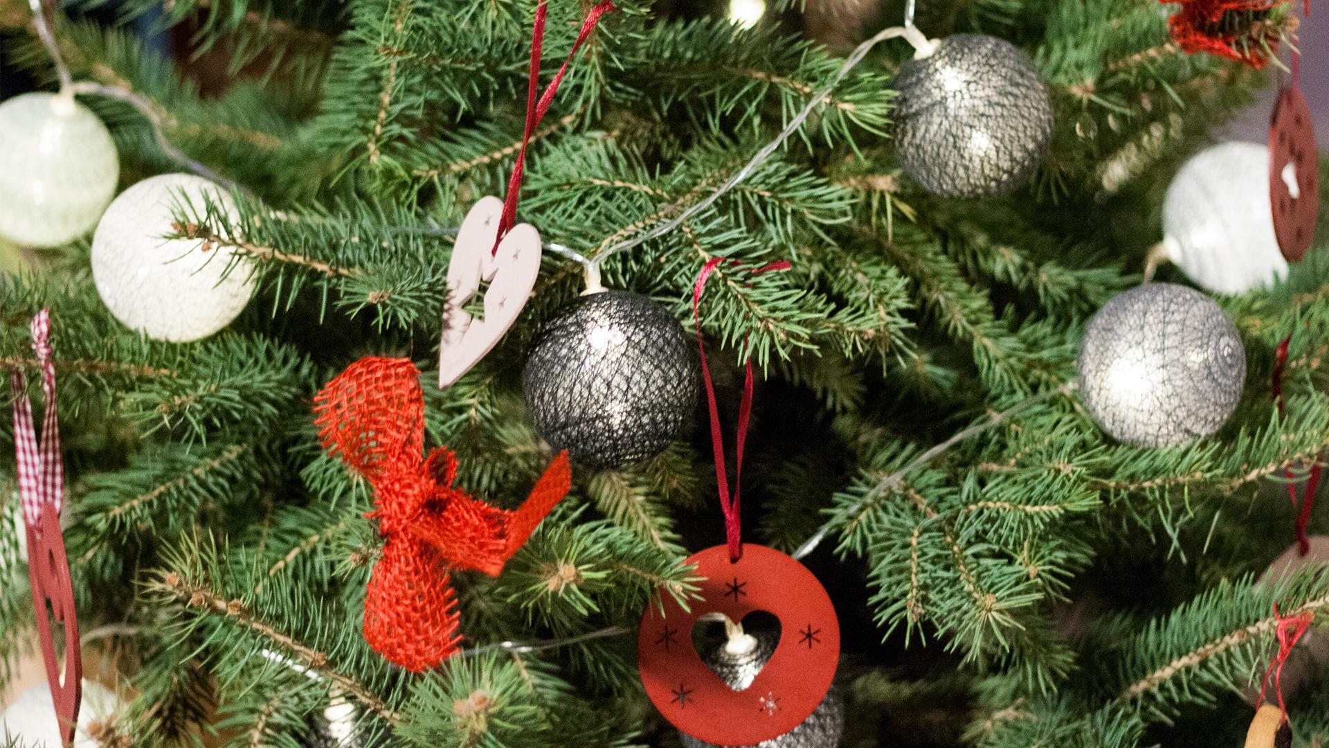 choina - 12 świątecznych wyznań