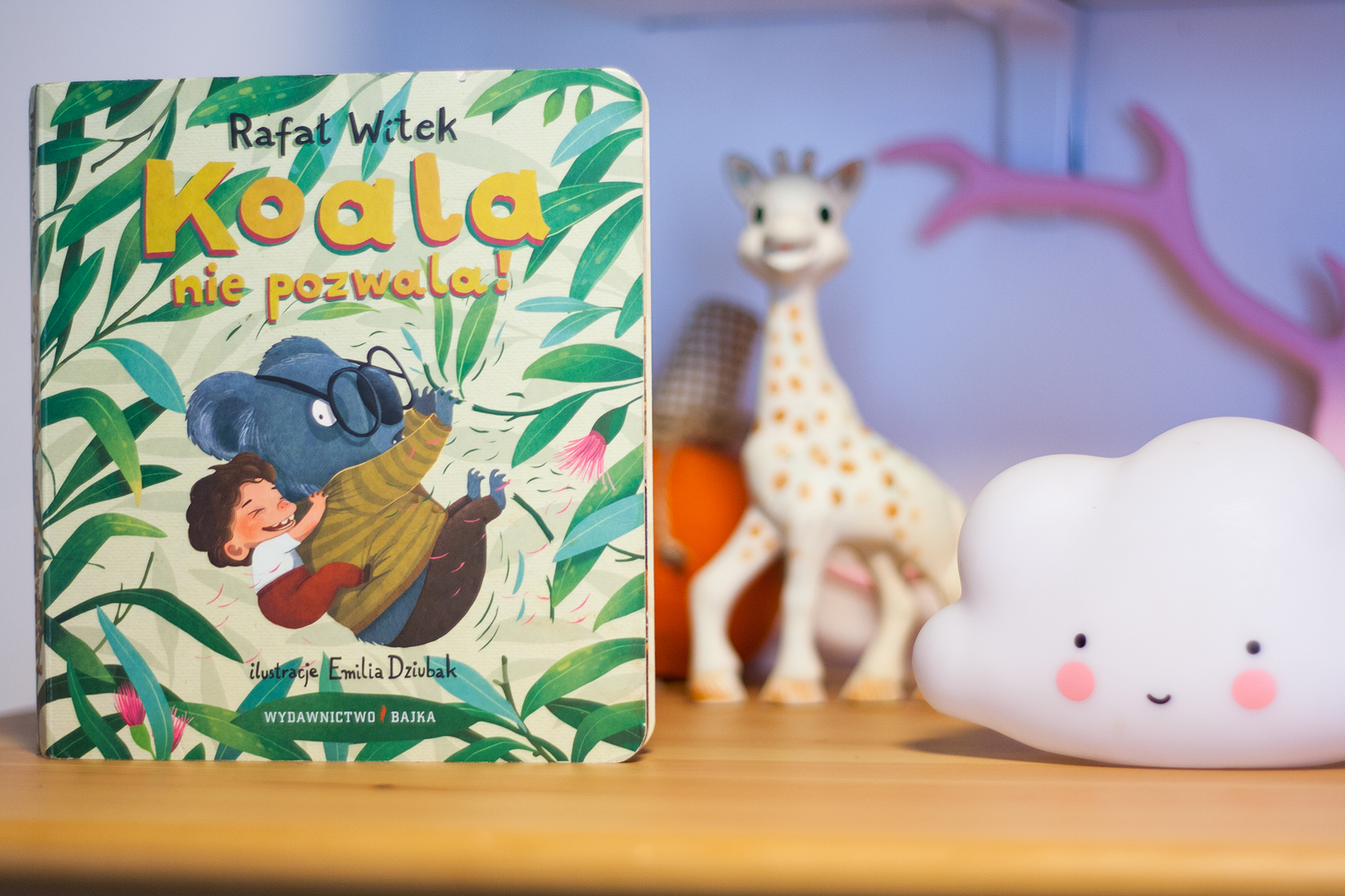 koala - Nasze ulubione książki o zwierzętach
