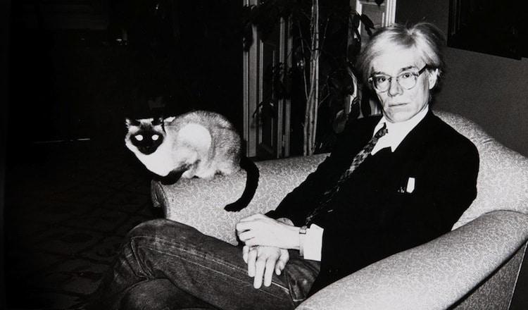 Andy Warhol cat - Dzielnik #32