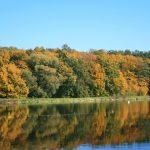 autumn 150x150 - Październik