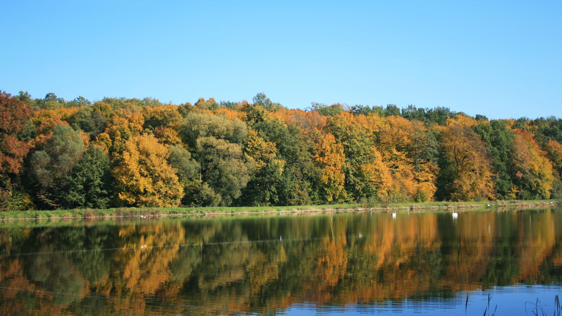 autumn - Październik